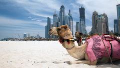 Här är kontrasterna stora –rid på kamel med Dubais skyline i bakgrunden.