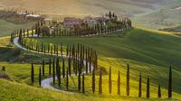 Möt hösten i Toscana