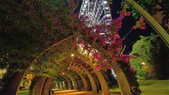 Brisbane South Bank Park, med Wheel of Brisbane i bakgrunden.