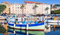 Korsika är känd över hela världen för sin goda glass.