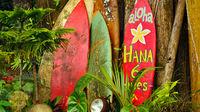 Aloha - Välkommen till Hawaii!